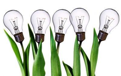 Business Idea Generation